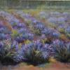 Lavender Fields pastel painting